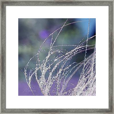 Winter Grass Framed Print by Artist and Photographer Laura Wrede