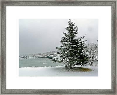Winter Harbor Scene Framed Print by Janice Drew