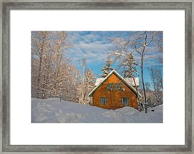 Winter Hideaway Framed Print by Pat Speirs
