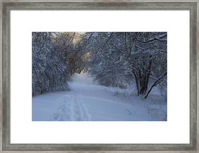 Winter Hike Framed Print by Andrew Pacheco