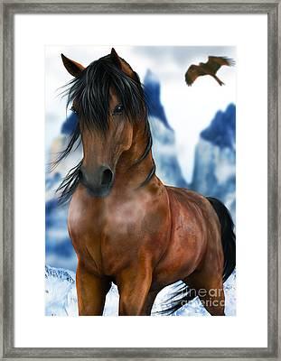 Winter Horse Framed Print