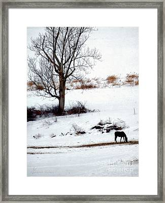 Winter Horse Pasture 1 Framed Print by Janine Riley