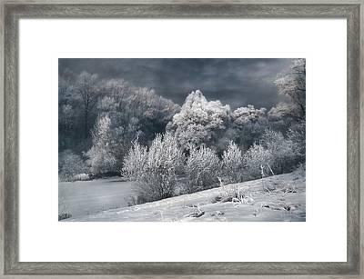 Winter - IIi Framed Print by Akos Kozari