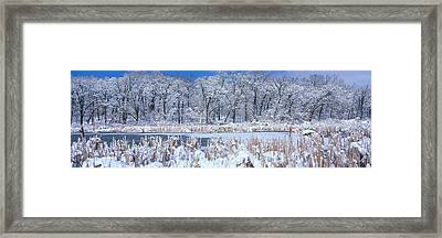 Winter, Illinois, Usa Framed Print by Panoramic Images