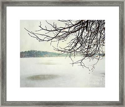 Winter Impressions IIb Framed Print