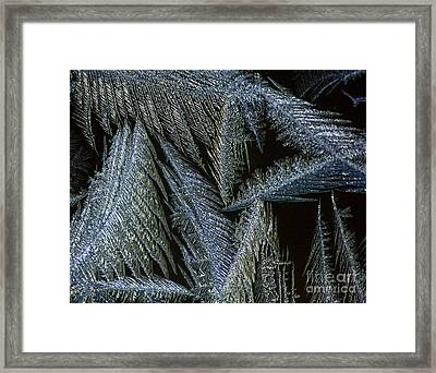Winter In Canada- Winter Frost Framed Print by Inspired Nature Photography Fine Art Photography