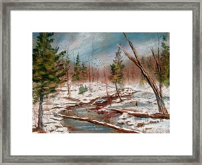 Winter In Canane Framed Print by Bruce Schrader