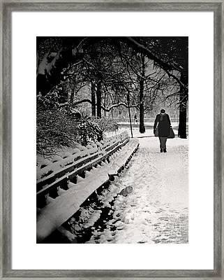 Winter In Central Park Framed Print by Madeline Ellis