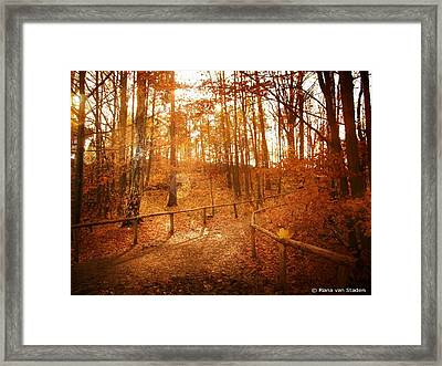 Winter In Europe Framed Print