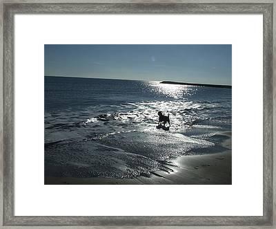 winter in Les Ste Marie de la mer Framed Print