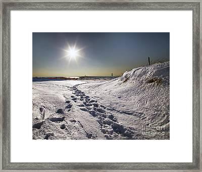 Winter In Ludington Framed Print