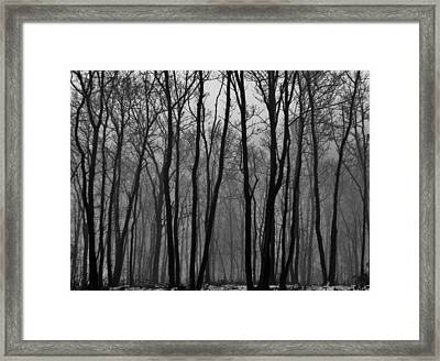 Winter In Pennsylvania Framed Print by Benjamin Yeager