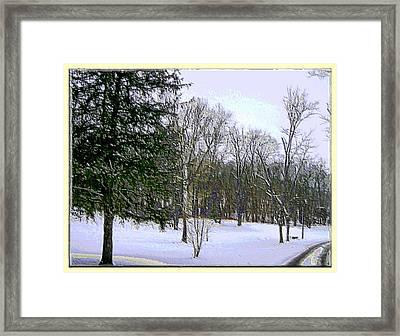 Winter In Purplish Hues Framed Print by Skyler Tipton