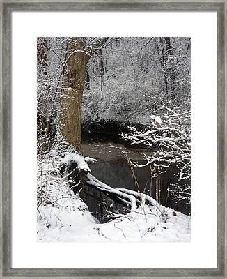 Winter In Rotary Park 2 Framed Print