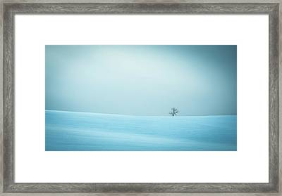 Winter In Solitude Framed Print