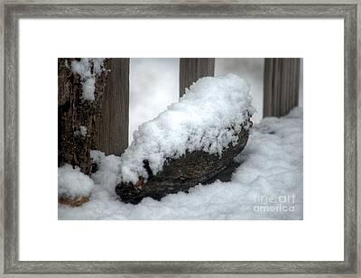 Winter In The Heartland 4 Framed Print by Deborah Smolinske