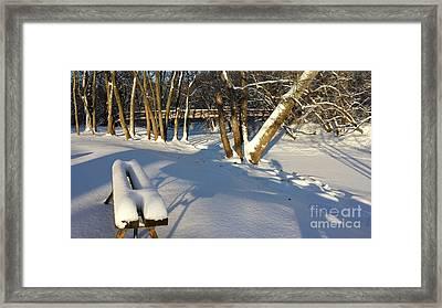 Winter In The Park Framed Print