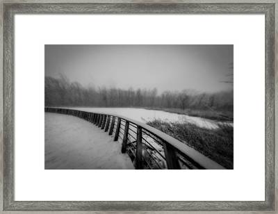 Winter At The Park  Framed Print