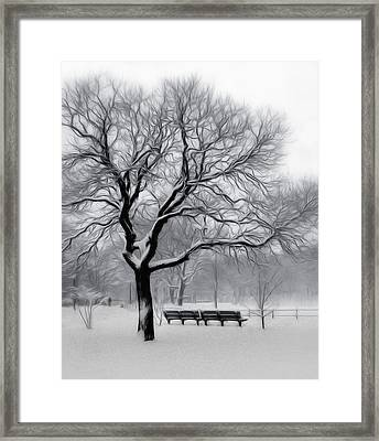 Framed Print featuring the digital art Winter In The Park by Nina Bradica