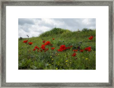 Winter In The Desert Framed Print