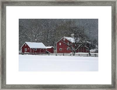 Winter In The Park Framed Print by Ann Bridges