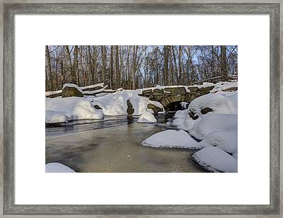 Winter In Weetamoo Woods Framed Print by Andrew Pacheco