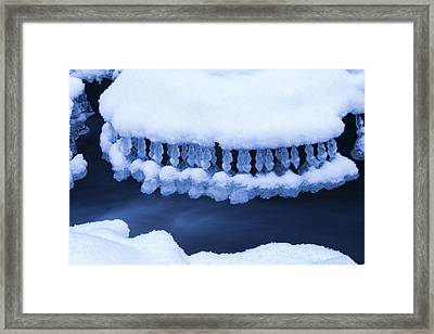 Winter Jewelry Framed Print by Mircea Costina Photography