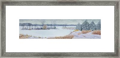 Winter Lake And Cedars Framed Print