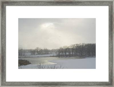 Winter Lake And Forest Framed Print
