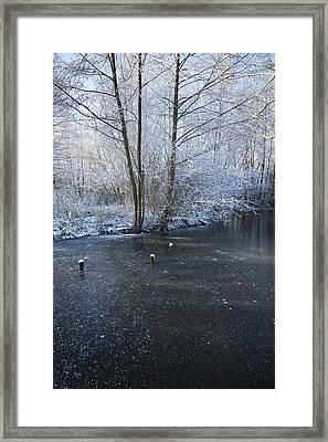 Winter Lake Framed Print by Svetlana Sewell