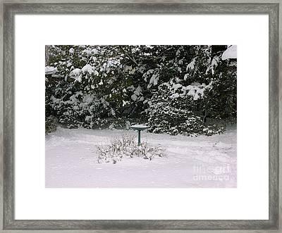 Winter Land Framed Print by Anthony Morretta