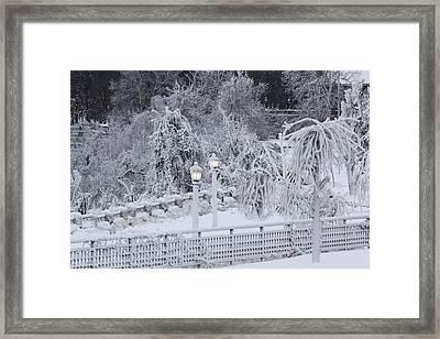 Winter Land Framed Print