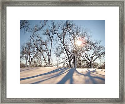 Framed Print featuring the photograph Winter Landscape by Alicia Knust