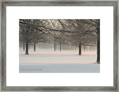 Winter Landscape Framed Print by Ann Murphy