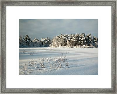 Winter Landscape At Mud Lake Ottawa Framed Print by Rob Huntley