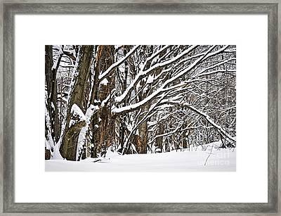 Winter Landscape Framed Print by Elena Elisseeva