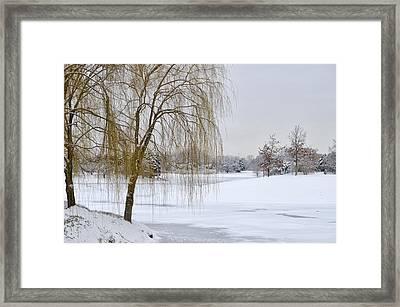Winter Landscape Framed Print by Julie Palencia