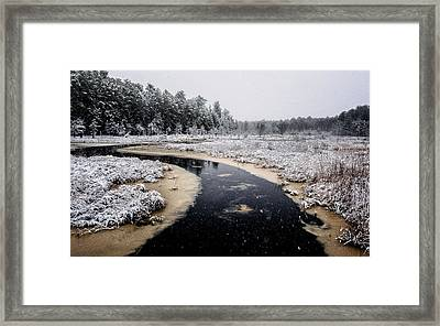 Winter Landscape Framed Print by Louis Dallara