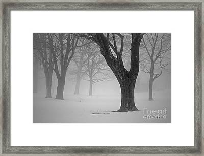 Winter Landscape V Framed Print by Dave Gordon