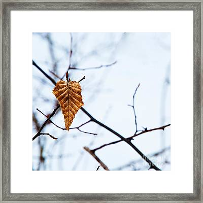 Framed Print featuring the photograph Winter Leaf by Kennerth and Birgitta Kullman