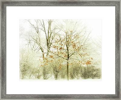 Winter Leaves Framed Print by Julie Palencia