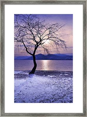 Winter Light At Manitou Beach Framed Print by Tara Turner