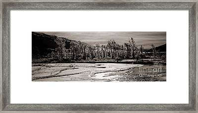 Framed Print featuring the photograph Winter Light by J L Woody Wooden