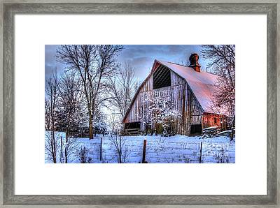 Winter Light Framed Print by Thomas Danilovich