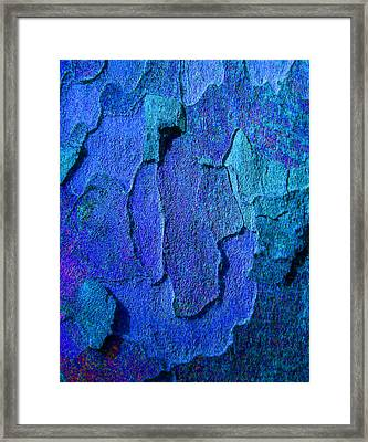Winter London Plane Tree Abstract 4 Framed Print