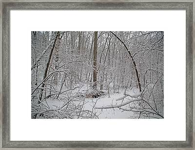 Winter Magic Mystic Framed Print