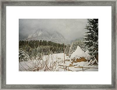 Winter Mood Framed Print by Cristina-Velina Ion