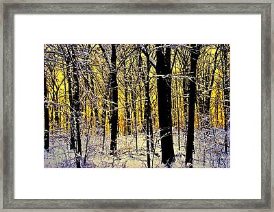 Winter Mood Lighting Framed Print by Frozen in Time Fine Art Photography