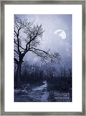 Winter Moonlight Blues Framed Print