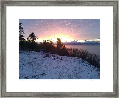 Winter Morn Framed Print by Susan Mumma